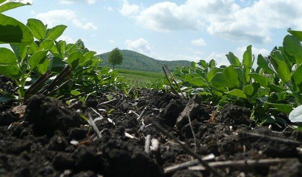 agra ackerbauforum kbd harzhof paaren